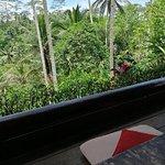 Φωτογραφία: Kampung Cafe & Cottages Ceking