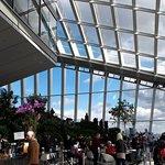 Sky Garden Photo