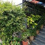 صورة فوتوغرافية لـ Ram's Kitchen - Poomaram Restaurant