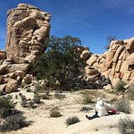 People enjoyed climbing on the rocks.