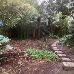 Fox Rosehill Gardens