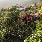 Tasca Catalina照片