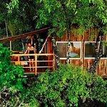 La Casa del Encino is nestled amongst the oak trees.