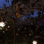 Foto de Limoni Cafe and Restaurant