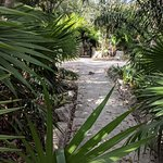 The path to Xcaret