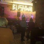 Photo of Bushwacka