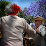 This couple at the danson in the park really caught my attention. It's amazing to see the love those older couples had for each other.  It was tough in this setting capturing images without too much commotion in the background but I like how the one came out--I also love those beautiful purple trees all over Mexico City.