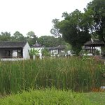 The wetlands areas on the gardens are very pleasant