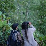 hike through this beautiful forest to find the quetzal