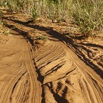 Chobe National Park, Botswana. You need a 4X4 vehicle.