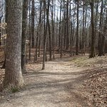 Hiking trail, Red Top Mountain State Park