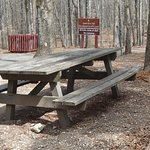 Picnic area, Red Top Mountain State Park