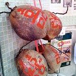 洪馨椰子照片
