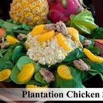 Our Plantation Chicken Salad