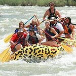 Rafting Yankee Jim Canyon en el río Yellowstone