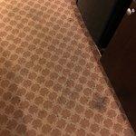 Disgusting room carpet!