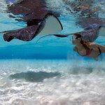 Aqua Watersports, Grand Cayman