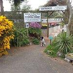 Plant World Gardens & Nursery