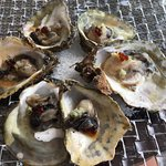 oysters, yes please!