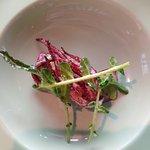 Totanetto e broccolo fiolaro