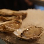 Фотография Joel's Oyster Bar