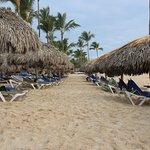 Nous arrivons du Caribe Club Princess Beach Resort & Spa.. Très belle plage - Quelques algues au début du séjour mais apres quelques jours, plus rien. Le tout est ramassé a chaque matin par l'hôtel - Bonne bouffe - Le seul bémol est de devoir réservé les palapas très tot le matin...
