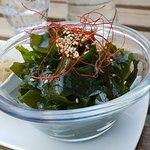 Algues de mer japonaises