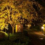 遊歩道(夜景)