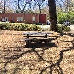 Snímek Thrasher Park