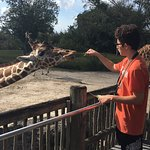 Zoo Miami – fénykép