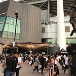 Melbourne Cricket Ground (MCG) Fotografie