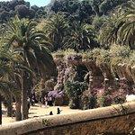 Landscape - Hotel Catalonia Park Guell Photo