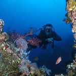 Wreck Diving the USS Liberty
