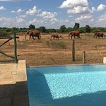 Right in front of the panoramic spot at Manyatta camp in Tsavo East.
