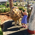 My Granddaughter Loves The Animals