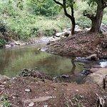 Small stream nearby