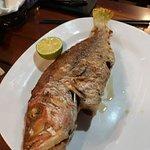 Hieu's Family Restaurant照片