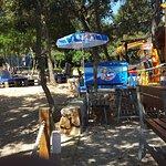 Beach bar and restaurant