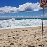 特里格海滩照片