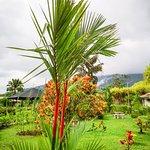 Landscape - Los Lagos Hotel Spa & Resort Photo