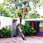Zona do chuveiro e barbecue, com uma árvore de Frangipanis. A minha flor favorita :)