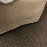 Microtel Inn & Suites by Wyndham Knoxville Photo