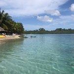 Starfish Beach Photo