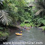 BIO provides you with water activities River Tubing trip on Penet River with a beautiful scenery around the river. On the middle of the trip you can see the beautiful of Pengempu Water Fall. For further information and reservation please contact us at 0851 0055 8810 / 0878 6140 0206 (yuli) or www.bioadventurer.com