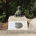 The maestro's dog is remembered outside.