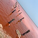 The Pink Sea, one of the most beautiful wonders in the world, is located at  Salinas Galerazamba. Between Barranquilla and Cartagena! Contact us +57 3505080876
