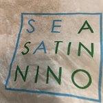 Sea Satin Nino照片
