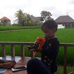 Foto de Alam De Ubud