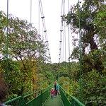 Guiding out of the Monteverde Area / Monteverde Wild Hikes / Monteverde, Puntarenas, Costa Rica