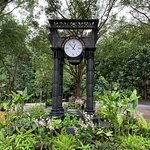 Photo de The Halia at Singapore Botanic Gardens